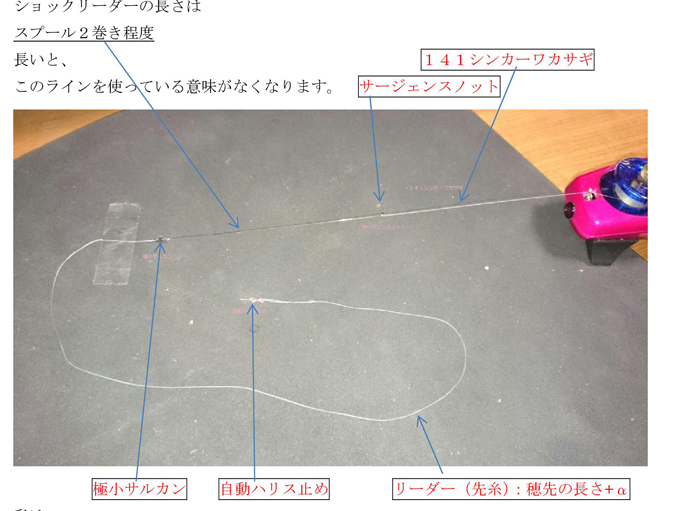 141-wakasago01
