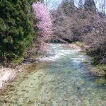 秋田県 秋田市 岩見川水系 フライレポート