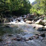 新潟魚野川水系 フライレポート