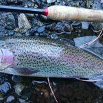 山梨県小菅川冬季釣り場フライレポート
