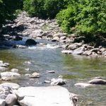 新潟県魚野川水系フライレポート