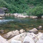 新潟県信濃川水系フライレポート