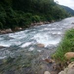 新潟県、信濃川水系群馬県利根川水系 フライレポート