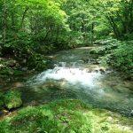 秋田県 仙北市 桧木内川水系 フライレポート