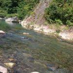 新潟県信濃川水系最終釣行フライレポート