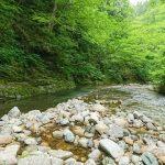 秋田県 仙北市 生保内川水系 フライレポート