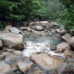 新潟、魚野川水系釣行 フライレポート